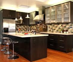 Kitchen Cabinet Canada Extraordinary Cabinets Ikea Usa Design Ideas Binets Ikea Kitchen