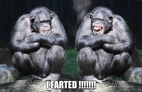 Chimp Meme - funny chimps imgflip