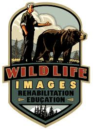 Oregon wildlife tours images Home wildlife images rehabilitation and education center png
