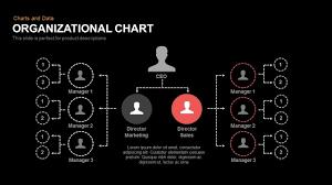 organizational chart powerpoint keynote template slidebazaar
