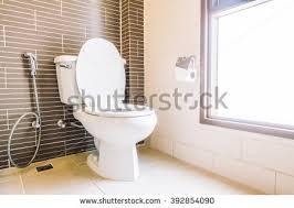 Decoration In Bathroom Toilet Seat Decoration Toilet Room Interior Stock Photo 420191641