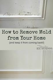 How To Prevent Mold In Bathroom Remove Mold From Your Home And Keep It From Coming Back Real
