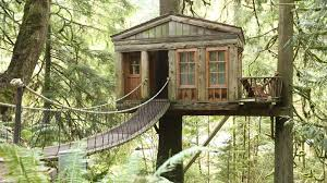 treehouse masters tree houses size best house design beautiful