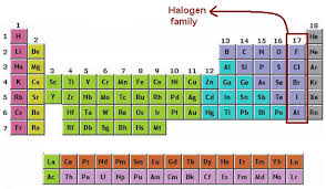 How Many Groups Are On The Periodic Table Halogen Family Halogen Group Chemistry Tutorcircle Com