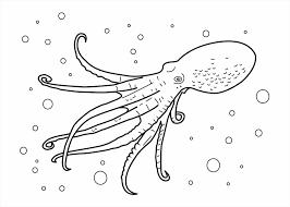 animal coloring pages printable sea animal spectacular ocean animals coloring pages ocean animals