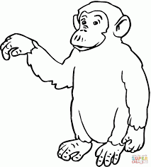 monkey hand coloring page animal print chimpanzee coloring