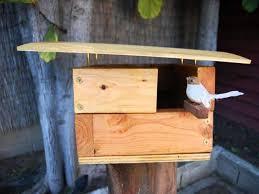 Cool Bird House Plans Start Building Bird Houses Now It U0027s Easy Birdcage Design Ideas