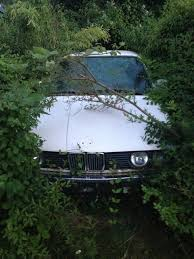 bmw denmark abandoned bmw series i found will wondering around the woods in