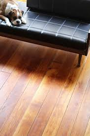 Hardwood Floor Shine Hardwood Floor Cleaning Cleaning Waxed Wood Floors Hardwood