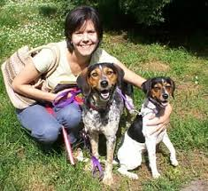 is a bluetick coonhound a good pet homewoods rescue for the wayward hound about those hounds
