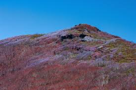 Garden Ridge Little Rock by Great Craggy Mountains Climbing Hiking U0026 Mountaineering