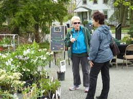 nj native plants plant sale rutgers master gardeners of essex