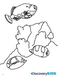 marine life coloring page discovery kids