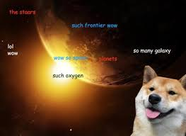 Such Doge Meme - such doge exploration much funny lol laugh animals pinterest
