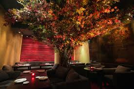 roka honours autumn with a maple tree installation