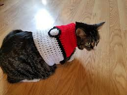 sweaters for cats adorable diy cat clothing for your
