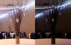 Diy Branches Centerpieces by Easy Diy Centerpieces For Any Season Georgetown Event Center