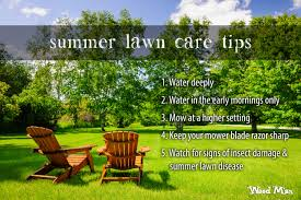 on the lawn with weed man seasonal lawn care tips u0026 advice from