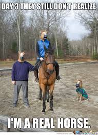 Horse Riding Meme - 25 very funny horse meme photos and pictures