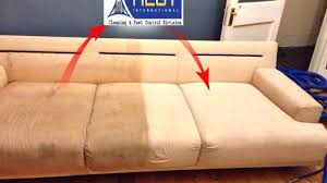 sofa cleaning san jose leather sofa cleaners near me cumberlanddems us