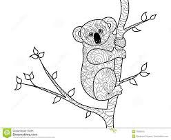 koala bear coloring page virtren com