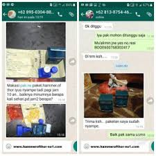jual apotik hammer of thor bali antar gratis kota denpasar bali