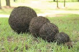 decorative vine balls