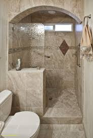 Showers In Small Bathrooms Tile Shower Ideas For Small Bathrooms Spiritual Glasses