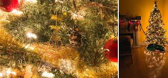 take better christmas tree photos in 5 easy steps photography tips on how to take christmas tree photos