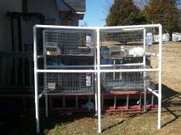 rabbit hutch plans u2013 how to build a pvc rabbit hutch besurvival