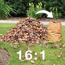 put fall leaves to work gardener u0027s supply