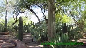 Botanical Gardens In Las Vegas Ethel M Botanical Cactus Garden Las Vegas