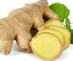 bawang putih obat kuat