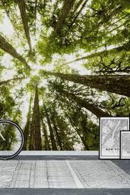 90 best forest wall murals images on pinterest lush green wall mural wallpaper