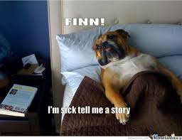 Sick In Bed Meme - sick dog is ill by ducani meme center