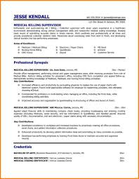 Mckinsey Resume Template Mckinsey Resume Cover Letter Job And Resume Template
