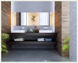 Beach Inspired Bathroom Accessories Bathroom Design Marvelous Oriental Shower Curtain Beach Themed