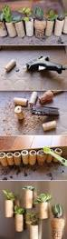 7 inventive diy wine cork crafts with suction cups for classroom