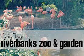 riverbanks botanical garden day trip riverbanks zoo u0026 garden charlotte moms blog