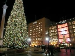 find a local christmas light company in san francisco