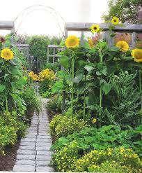 perennial garden vegetables along the brick path through the vegetable garden bloom