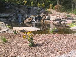 Aquascape Ponds D U0026 R Excavating U0026 Landscaping Inc Aquascape Ponds And Waterfalls
