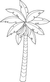 banana tree leaf outline clipart clipartfox coloring page banana