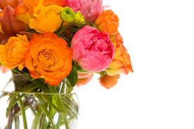 cut flowers how to keep your cut flowers fresh care2 healthy living