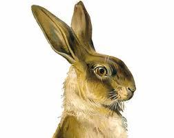 vintage rabbit the velveteen rabbit instant printable antique