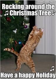 Cat Christmas Tree Meme - cat christmas meme 28 images the eco cat lady speaks my favorite
