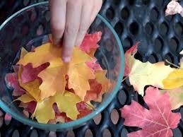 simply beautiful fall leaf decor creatively organized
