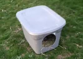 using a plastic tote box as a duck nesting area raising chickens