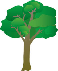 tree symbol index of ress tice 1 partage visuel ian symbols flora trees