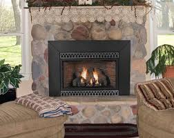 Outdoor Fireplace Insert - fireplace inserts chicago arlington heights electric gas wood